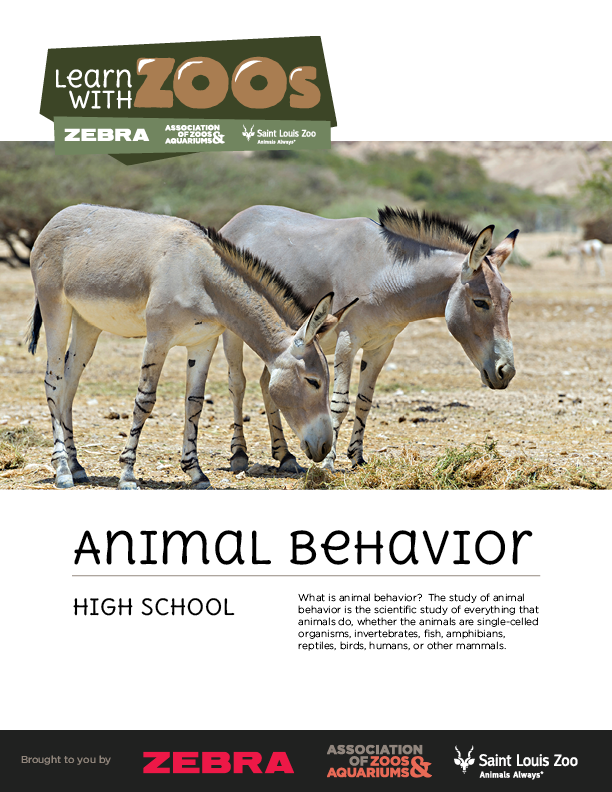 Animal Behavior Lesson Plan - high school