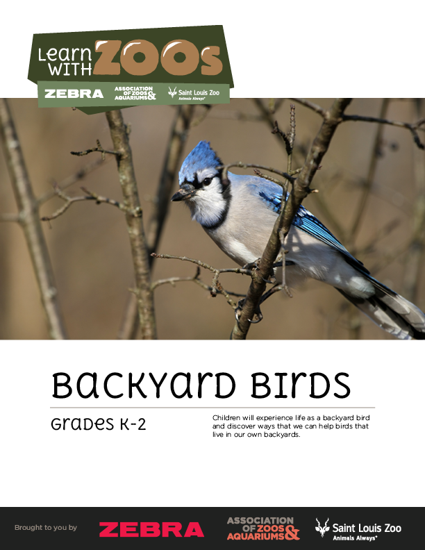 Backyard Birds 2014 K-2