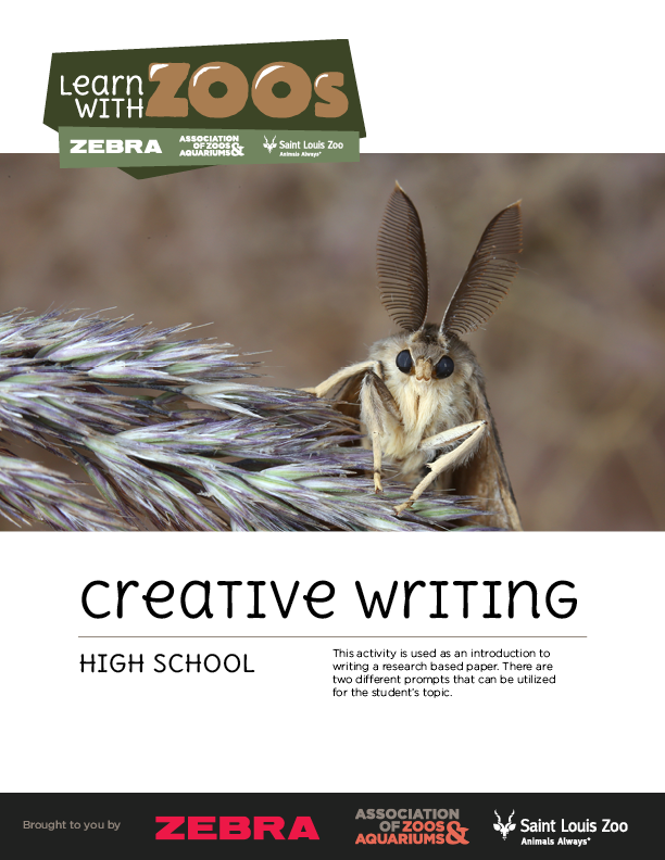 Creative Writing - high school