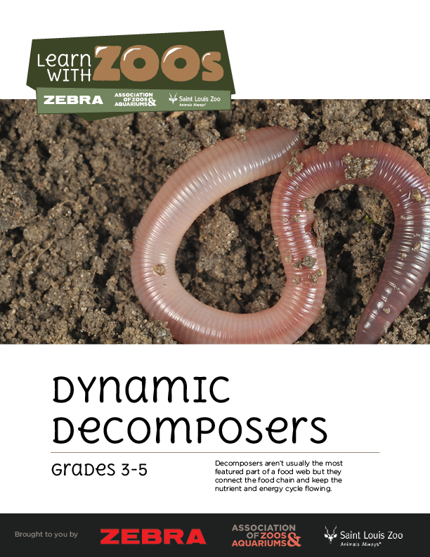Dynamic Decomposers 3-5